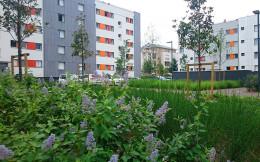 194 logements - Montconseil